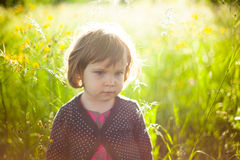 Jardín de la luz del sol Imagen de archivo libre de regalías
