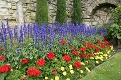 Jardín de la pared Foto de archivo