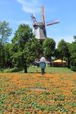 Jardín de la pared de Bremen en Alemania Foto de archivo libre de regalías
