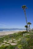 Jardín de la playa de la palmera Fotografía de archivo
