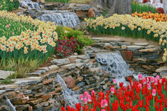 Jardín de la primavera en la madera de Emirgan Fotos de archivo
