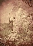 Jardín de la vendimia Fotos de archivo