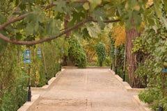 Jardín de las linternas fotos de archivo