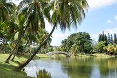 Jardín de los arbolados Imagenes de archivo