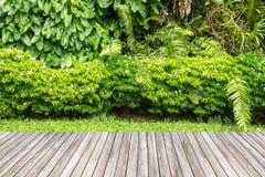 Jardín de madera del decking y de la planta foto de archivo