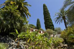 Jardín de Marimutra en Blanes, España Foto de archivo libre de regalías
