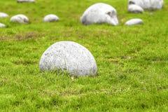 Jardín de piedras Foto de archivo