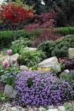 Jardín de piedras en flores de la primavera Fotografía de archivo