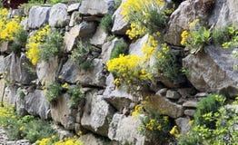 Jardín de piedras o una pared del jardín Foto de archivo