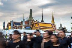 Jardín de rey Rama 9 Imagenes de archivo