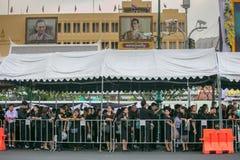 Jardín de rey Rama 9 Imagen de archivo