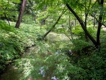 Jardín de Rikugien, Tokio, Japón imagenes de archivo