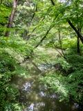 Jardín de Rikugien, Tokio, Japón imagen de archivo libre de regalías