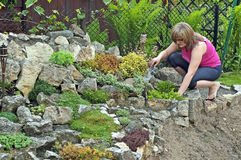 Jardín de roca en resorte imagen de archivo