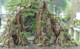 Jardín de rocalla de dos montañas con simetría fotografía de archivo