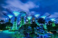 Jardín de Singapur por la opinión de la noche de la bahía Fotografía de archivo