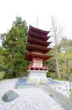 Jardín de té japonés, San Francisco Imágenes de archivo libres de regalías