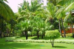 Jardín de un centro turístico imagen de archivo libre de regalías