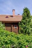 jardín de una casa Imagen de archivo