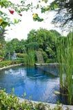Jardín del agua Fotos de archivo