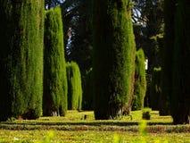 Jardín del Alcazar de Sevilla Fotos de archivo libres de regalías