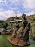 Jardín del cacto Imagen de archivo libre de regalías
