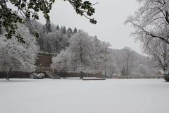 Jardín del castillo de Heidelberg foto de archivo