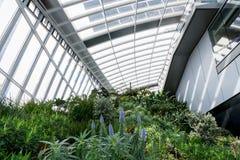 Jardín del cielo en la ciudad de Londres Fotos de archivo