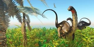Jardín del dinosaurio del Apatosaurus Imagen de archivo libre de regalías