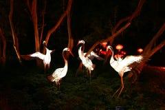 Jardín del espectáculo de las luces en el jardín botánico de Montreal fotos de archivo libres de regalías