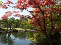 Jardín del estilo japonés Foto de archivo libre de regalías
