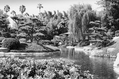 Jardín del estilo japonés con la charca 2 Imagen de archivo libre de regalías