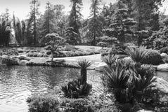 Jardín del estilo japonés con la charca 4 Foto de archivo