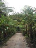 Jardín del folio de Maison fotografía de archivo libre de regalías