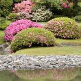 Jardín del japonés de Seattle Imagenes de archivo