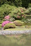 Jardín del japonés de Seattle Imagen de archivo libre de regalías