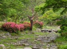 Jardín del japonés del verano Foto de archivo libre de regalías