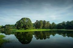Jardín del lago Taiping Foto de archivo libre de regalías