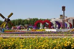 Jardín del milagro, Dubai Imagen de archivo libre de regalías