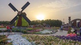 Jardín del milagro - Dubai Imagenes de archivo