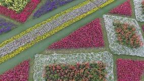 Jardín del milagro en Shangai almacen de video