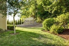 Jardín del patio trasero con el árbol de abedul Fotografía de archivo libre de regalías