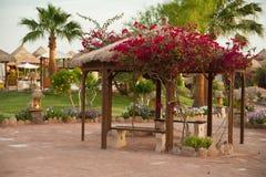 Jardín del patio trasero del Gazebo Foto de archivo