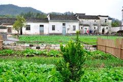 Jardín del pueblo de Xidi Imágenes de archivo libres de regalías