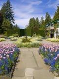 Jardín del resorte Imágenes de archivo libres de regalías