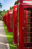 Jardín del teléfono Fotos de archivo
