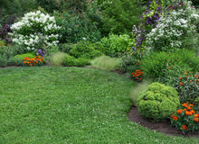 Jardín del verano con el césped verde fotografía de archivo
