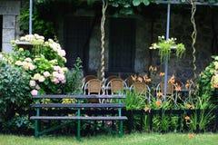 Jardín del verano con las flores Fotografía de archivo