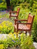 Jardín en verano fotografía de archivo