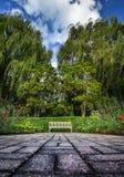 Jardín del verano con un banco de parque Foto de archivo libre de regalías